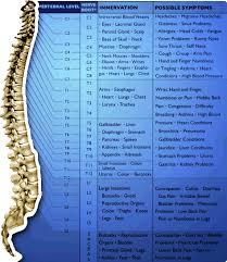 Chiropractor Cranston Richiropractic Charts Diagrams