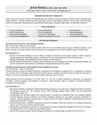 Security Resume Sample Brilliant Ideas Of Bunch Director Security Resume Examples Cv 42