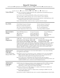 Store Manager Resume Sample Inspirational It Sales Resume Pdf