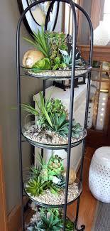 Best 25+ Indoor succulents ideas on Pinterest | Succulents, Indoor succulent  garden and Propagating succulents