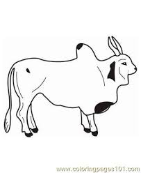 Small Picture Ox Coloring Page Free Bull Coloring Pages ColoringPages101com
