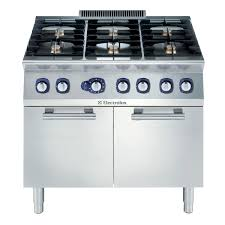 Professional Ovens For Home Electrolux Professional 6 Burner Gas Range And Large Oven Costco