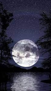 1080x1920 Moon Dark Trees Lake Night ...