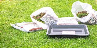 diy real grass toilet for dogs