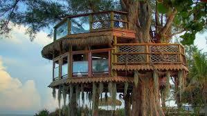luxurious tree house. Top Luxury Tree Houses Luxurious House E