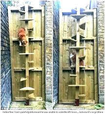 outdoor cat tree house outdoor cat tree house plans trees for door wall mounted best outdoor cat tree