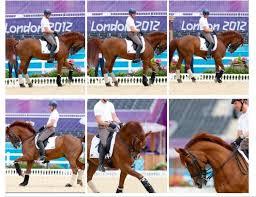 Patrik Kittel Reignites Rollkur Controversy at Olympics   STOP ANIMAL ABUSE