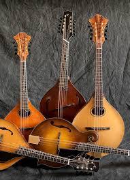 Lawrence Smart Stringed Instruments