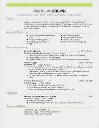 Template Best Cv Format Word Document Download Format