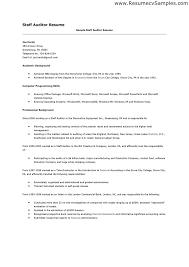 sample staff application internal auditors job description
