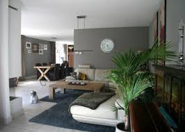 Kamerontwerp Interieur Woonkamer Zwart Wit Huisdecoratie Ideeën