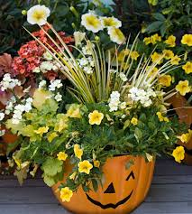 Container Gardens For Sun  Home Outdoor DecorationContainer Garden Ideas For Fall
