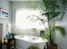 Good Bathroom Plants Closed White Bathtub Near Simple Window Plus Sheer  Curtain And Picture Above Towel Handle Plus Floating End Table On Floor