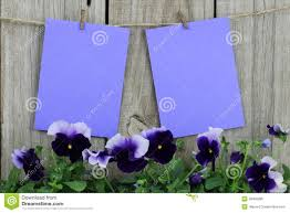 purple note cards purple note cards hanging on clothesline with purple flower border