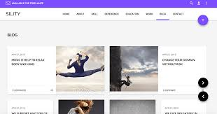 Sility Material Design Wordpress Theme For Your Online Resume Or