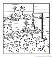 Small Picture Chickens Coloring Page Free Chicks Hens and Roosters Coloring
