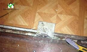 asbestos sheet flooring identification asbestos floors asbestos management new vinyl asbestos floor tiles and sheet flooring