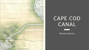 Cape Cod Canal Updated Fishing Report Salty Cape