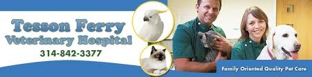 Image result for tesson ferry veterinary hospital
