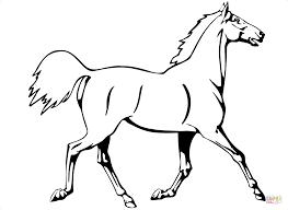 Disegni Di Cavalli Da Colorare Pagine Da Colorare Stampabili Con