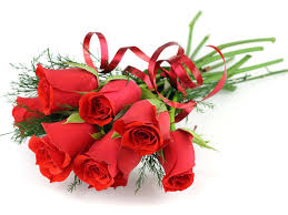 Image result for images of roses