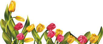spring flowers border clipart.  Border Graphic Png Res Tulip Border By Hanabell D Clipart Spring  And Flowers Border Clipart L