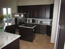 Thermofoil Kitchen Cabinets Surripuinet