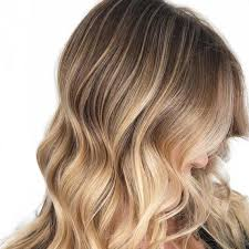 The Foolproof Way To Go From Brown To Blonde Hair Wella