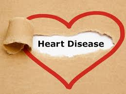 heart disease essay coronary heart disease essay