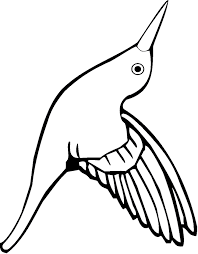 Small Picture Best Hummingbird Coloring Pictures Coloring Page Design zaenalus