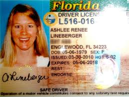 Locale Driver Relocates Nbc Florida - On Unfortunate To Dmv South 6 License