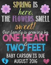 spring baby announcements spring pregnancy announcement flowers pregnancy reveal spring