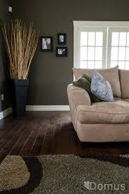 ... Awesome Living Room Ideas Dark Wood Floor 19 For Your Red And Green Living  Room Ideas ...