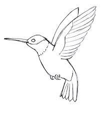 simple hummingbird drawing. Modren Drawing Simple Hummingbird Line Drawing Qqttfuq Intended Pinterest