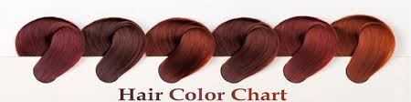 Hair Color Chart Hair Color Ring Human Hair Color Wigs