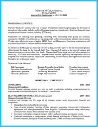 Internal Auditor Resume Sample Audit Template Director Of Senior