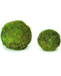 Decorative Moss Balls Dried Moss Balls Preserved 1001100 inch diameter 21