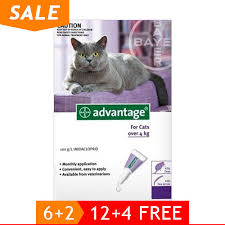 imidacloprid for cats. Delighful Cats Advantage Cats Over 9lbs Purple And Imidacloprid For