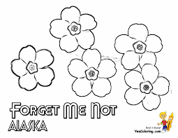 Collection of free printable coloring pages of flowers for kids (33) easy spring coloring sheet flower coloring pages for kids Magnificent States Flower Coloring Sheets A G Alabama Georgia Free