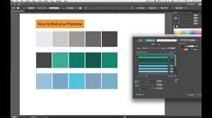 Find Pantone Color Code Illustrator