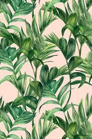 green apple wallpaper tumblr. best 25+ palm tree iphone wallpaper ideas on pinterest | backgrounds, tropical background and rose gold backgrounds green apple tumblr