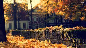 Cozy HD Autumn Wallpapers - Wallpaper Cave