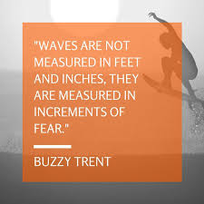 Surfing Quotes Unique 48 Quotes About Surfing Surfd