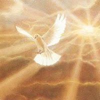 Laissez vous diriger par le Saint Esprit ! - HVKL MISSION