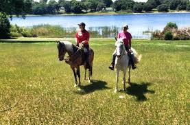 Dream Catchers Horse Ranch DreamCatcher Horse Ranch and Rescue Clermont All You Need to 11
