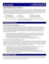 Resume Marketing Executive Summary Awesome Digital Marketing