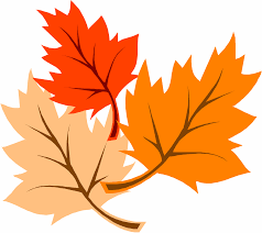 Image result for cartoon leaves