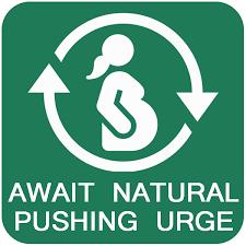 Visual Birth Plan Icons Visual Birth Plan Icons Rome Fontanacountryinn Com