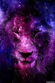 Galaxy Lion Wallpapers - Top Free ...