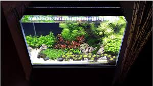 above is a planted tank lit with 2 satellite led plus on yellow setting